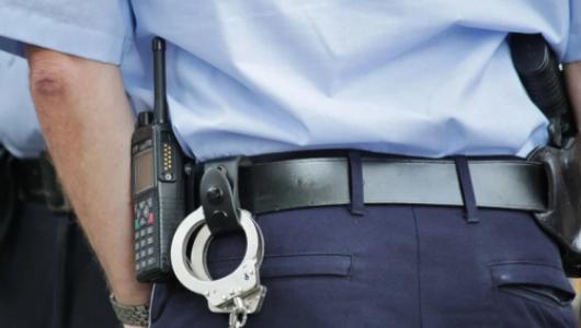 «Дядя Степа» уже не тот: взаимодействие сотрудников полиции и граждан Севастополя далеки от идеальных