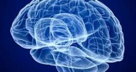 Влияет ли беременность на интеллект?
