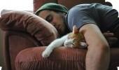 Самые удивительные и интересные факты про сон