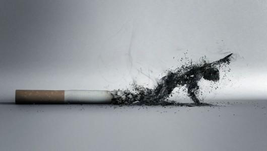 Правда и мифы о курении: капля никотина убивает лошадь, но не овцу?