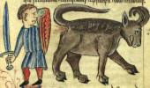 Самое неприличное животное древнего мира