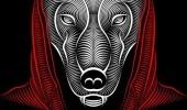 Исчадие ада или научное явление? Тайны дьявольских псов