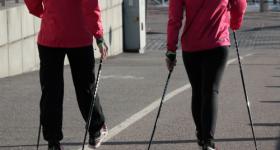 В Севастополе пройдут тренировки по скандинавской ходьбе